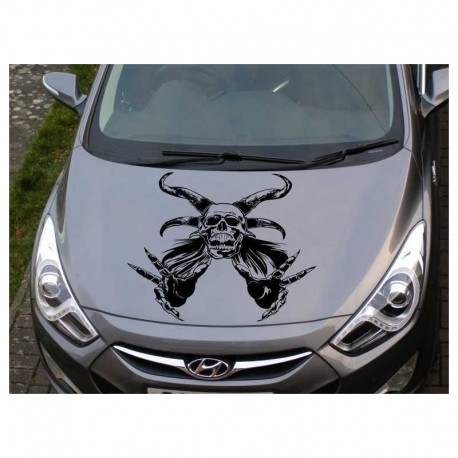 Demon car bonnet sticker.