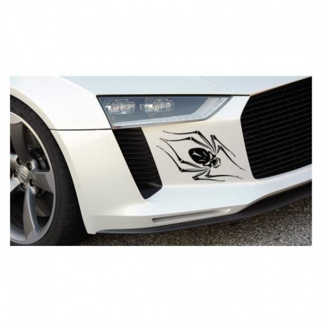 Spider auto decal, spider car bumper sticker.
