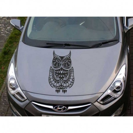 Owl car decal, owl auto sticker.